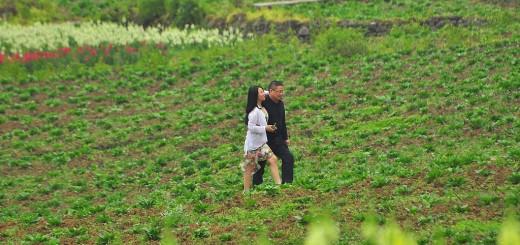 Para przechadząjąca się wśród kwiatów w ogrodzie Damu Huagu w okolicach Fuling.